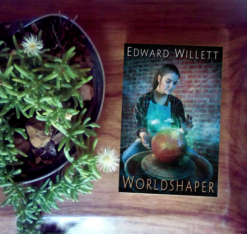 Excerpt Wordlshaper by Edward Willet Portal Fantasy book series